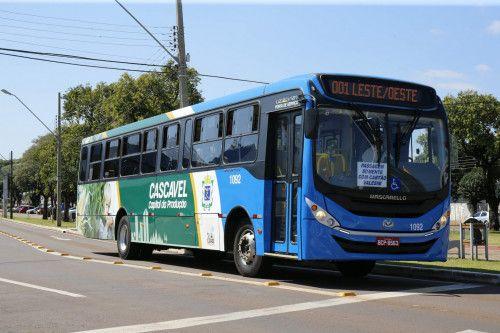 Conheça detalhes do sistema de transporte público de Cascavel