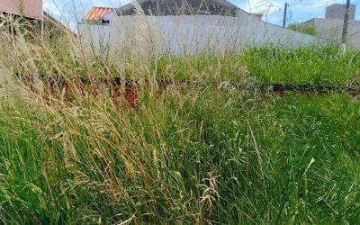 Falta de servidores na Secretaria de Meio Ambiente é denunciada ao Ministério Público